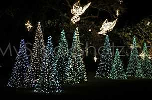 Christmas Lights at Bellingrath Gardens