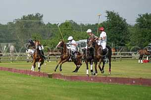 Polo At The Point