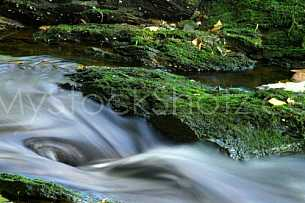Water at moccasin gap - Alabama