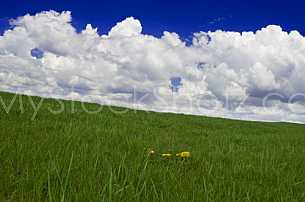 Grassy hill and clouds