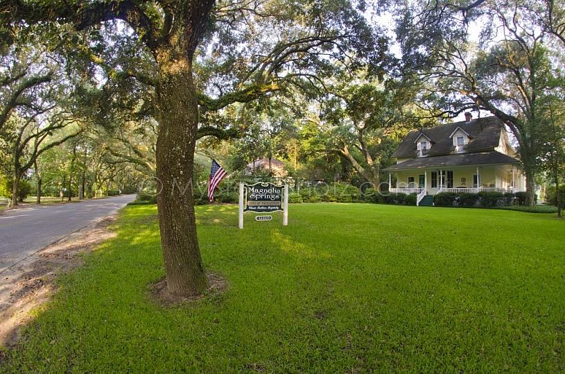 Senic Oak Street - Magnolia Springs, AL