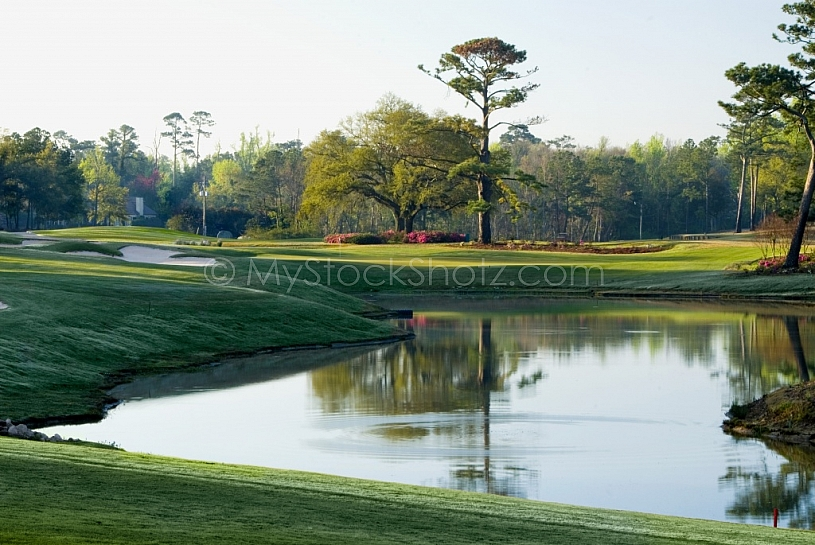 Tranquil golf course