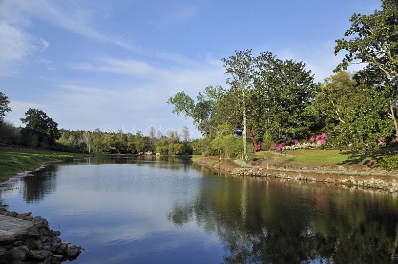 Mirror Lake at Bellingrath