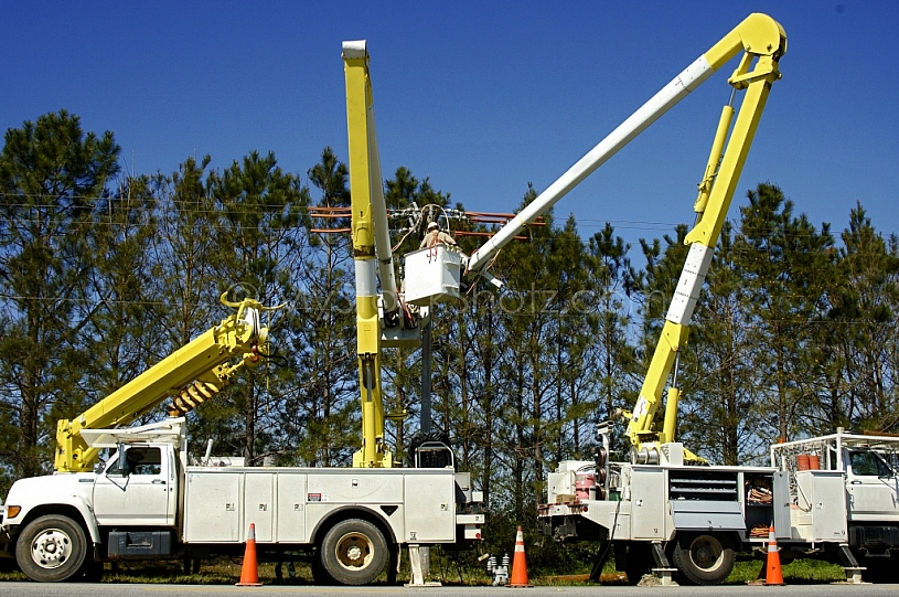 Electric Utility Workers