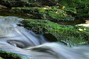 Water at moccasin gap - Alabama